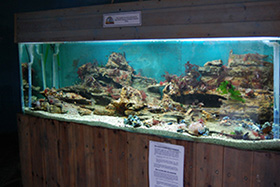 Local Marine display for CCW