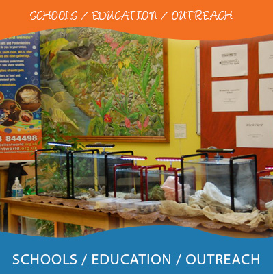 Schools /Education / Outreach